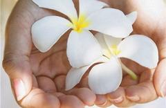 Натуральная косметика и аллергия