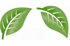 Экологически чистые моющие средства