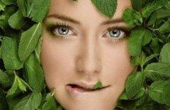 organic kosmetika