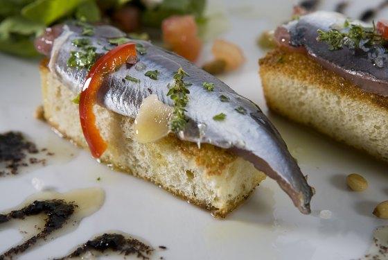 anchous2