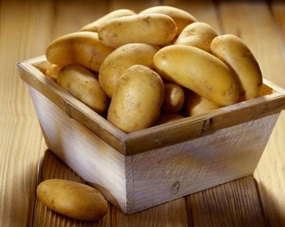 kak_hranit_kartofel2