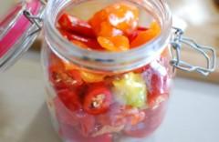 Ostryj-konservirovannyj-chili-240