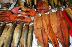 riba kopch