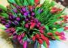 dostavka-svezhih-cvetov