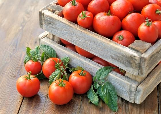 kak_sohranit_pomidory_svegimi_do_ng1