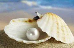 perli1