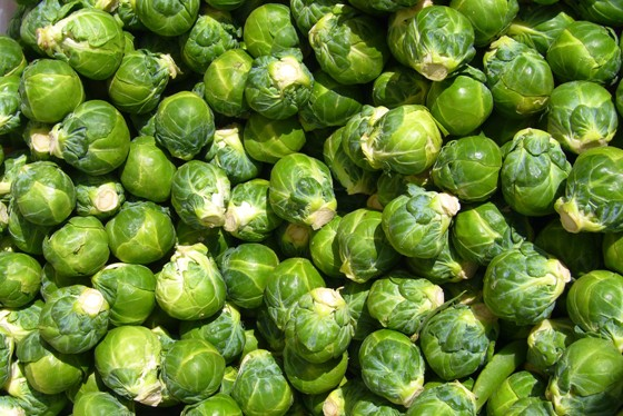 Brussel-Sprouts12
