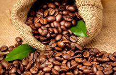 kofe-vo-lvove