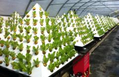 sweet-inspiration-hydroponic-gardens-manificent-design-1000-images-about-diy-gardening